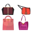 women leather color handbags isolated on white vector image vector image