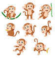monkey playing with different posing vector image vector image