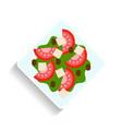 vegetable salad flat food or vector image