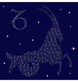Zodiac sign Capricorn on the starry sky vector image vector image