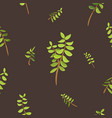 abstract leaves with tree branches ornaments vector image