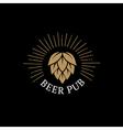 beer pub hand drawn lettering logo label badge vector image