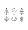 collection trees in linear style decorative vector image vector image