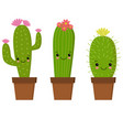 cute cartoon cactus with funny vector image