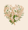 herbal heart floral bouquet vector image vector image