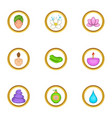 spa equipment icons set cartoon style vector image vector image