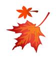 icon fallen leaves vector image vector image