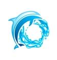 Dolphin emblem vector image