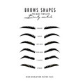 brow bar poster microblading eyebrows shapes vector image