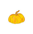 color pumpkin icon on a white vector image