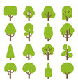 flat tree forest trees nature hardwood plants vector image