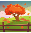 The Autumn Tree vector image vector image