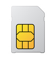 white blank sim card vector image