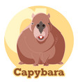 abc cartoon capybara vector image