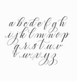 hand-drawn doodle calligraphy alphabet vector image vector image