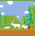 nature forest animal silhouettes environment vector image