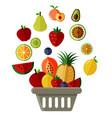 basket of fruit vector image
