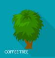 coffee tree icon flat style vector image