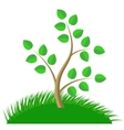 Green Cartoon Tree vector image vector image