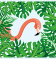 pink flamingo and tropical leaves vector image vector image