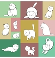 Set of cats in boxes vector image vector image
