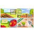 set video tutorials about gardening vegetables vector image