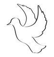 sketch of pigeon bird flying hand drawn vector image vector image