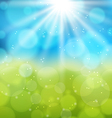 Sunny natural background with lens flare vector image vector image