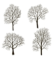 trees without leaves silhouette vector image vector image