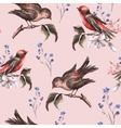 Vintage Floral Seamless Background with Birds vector image