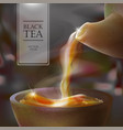 3d of a tea ceremony from the vector image vector image