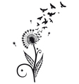 Dandelion with birds vector image vector image