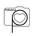 logo for professional photographer vector image