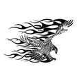 flying eagle spread out its feather black eagle vector image vector image