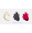 hearth vector image
