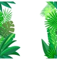 Leaves of tropical palm on white Seamless pattern vector image