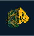 power tiger vector image vector image