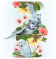 vertical border seamless background bird vector image vector image
