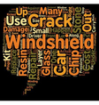 Windshield Crack Repair text background wordcloud vector image vector image