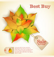 abstract floral autumn sale poster vector image vector image