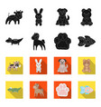 an unrealistic blackflet animal icons in set vector image vector image