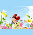 cartoon funny ladybug flying over flower field vector image vector image