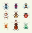 insects icons isolated on background vector image vector image