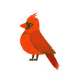 small bright red tropical bird colorful vector image vector image
