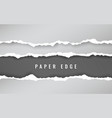 torn paper edge torn paper stripes ripped squared vector image vector image