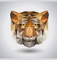 abstract polygonal tirangle animal tiger hipster vector image