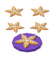 christmas cookie of star shape vector image