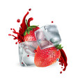 fresh strawberries with ice cubes and a splash of vector image vector image