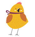 small chicken with decorative tape around neck vector image
