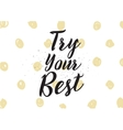 try your best inscription greeting card vector image vector image